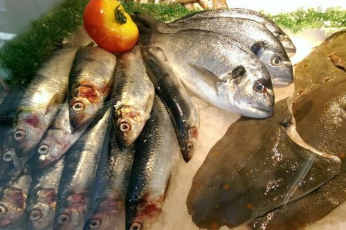 Fischfeinkost Lange